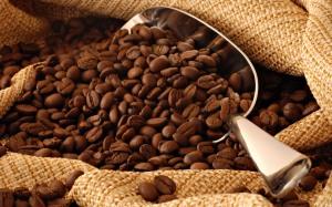coffeebean